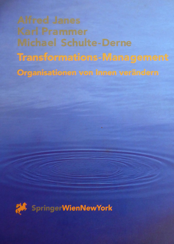41_Transformationsmanagement-Springer.jpg